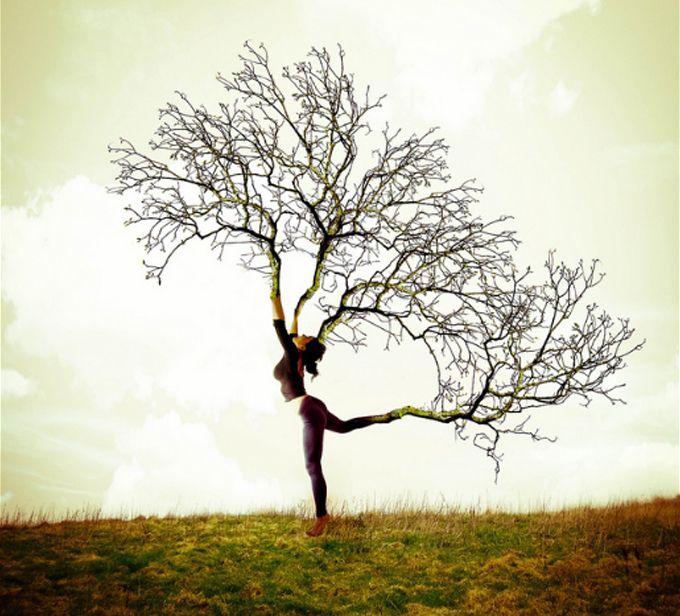 Natural and creative idea